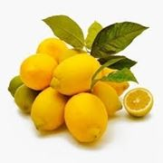 Risposta : pianta di limone