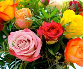fiori per tutte le occasioni