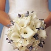 bouquet per chiedere scusa