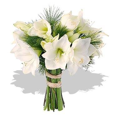 bouquet per laurea e diploma