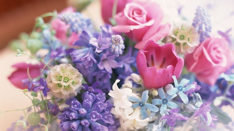 Composizione fiori-23