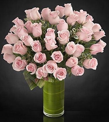 consegna fiori Carpi