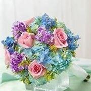 consegna fiori Massa