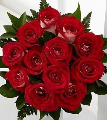 fiori Benevento