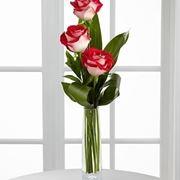 fiori online Latina