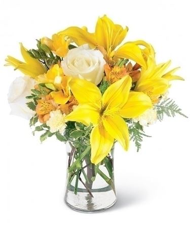 fiori online Novara