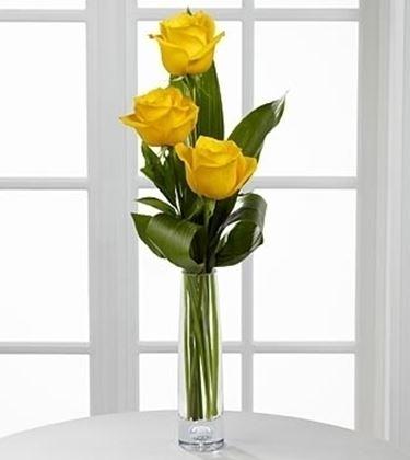 fiori online Trento