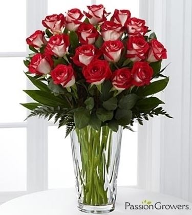 fiori online Vicenza