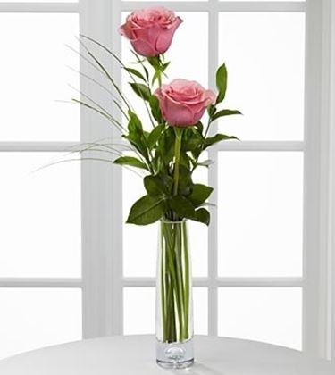 fiori Viterbo