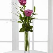 fiori Vittoria