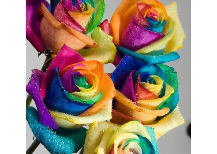 invio fiori per matrimonio