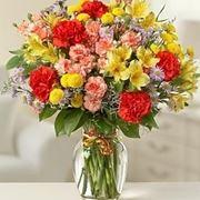 consegna fiori per chiedere scusa