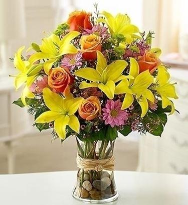 consegna fiori per mi dispiace