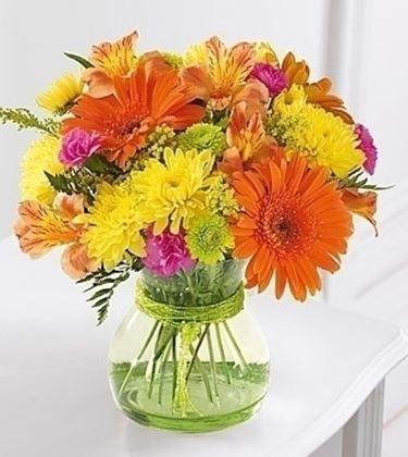 inviare fiori a Torino