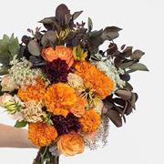 consegna dei fiori a Matera