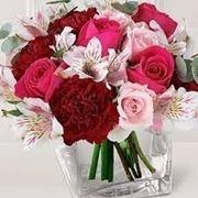consegna fiori a Padova