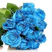 Domanda : fiori per matrimonio