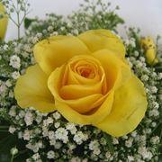 fiori anniversario-7