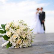 Fiori di luglio per matrimonio: quali sono le specie di stagione