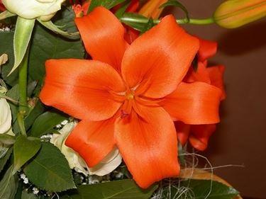 fiori festa della mamma-1