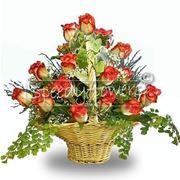 fiori laurea-5