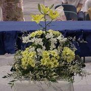 fiori per il diploma-1