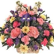 fiori san valentino-2