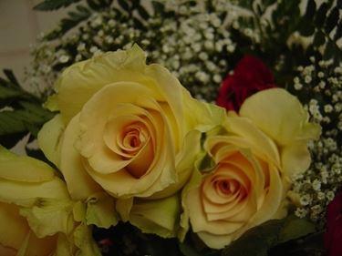 bouquet di fiori-3