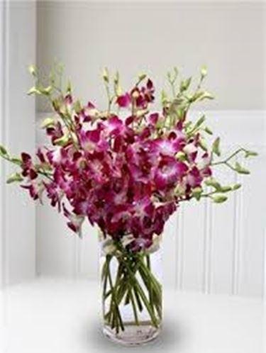 composizioni di fiori secchi-3