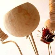 composizioni di fiori secchi-5