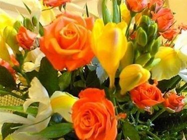fiori compleanno-4