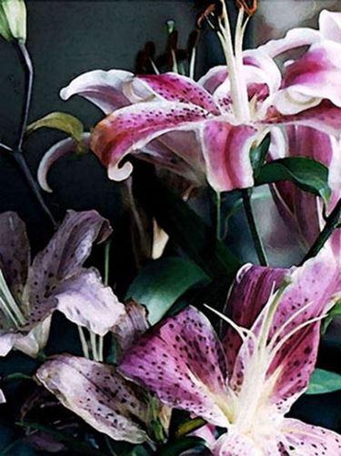 fiori cresima-4
