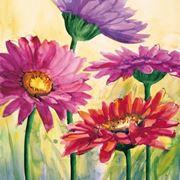 fiori diploma-3