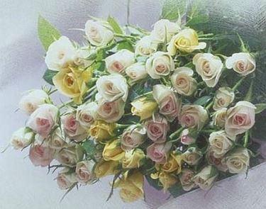 fiori festa del papà