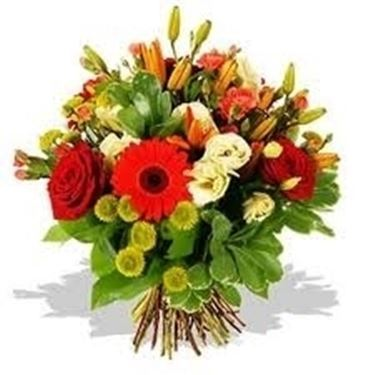 fiori laurea-4
