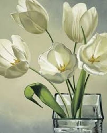 fiori onomastico-5