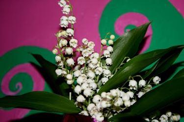 fiori ringraziamenti-6