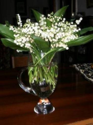 fiori ringraziamenti-7