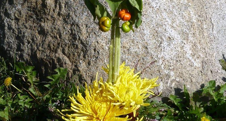 I passi per eseguire una composizione di fiori artificiali