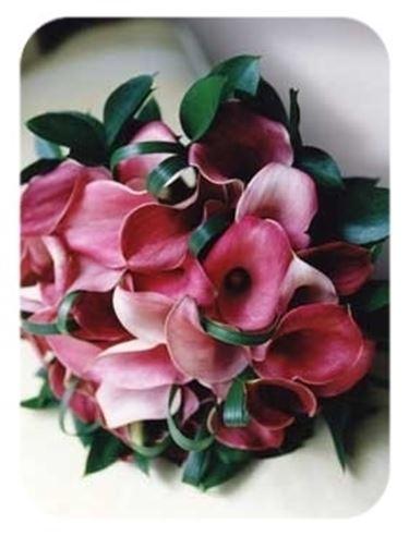 inviare fiori-9