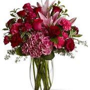 invio fiori-6