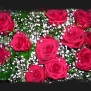 mazzo di rose-9