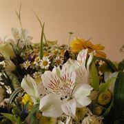 Quali fiori scegliere: naturali, secchi, freschi o artificiali
