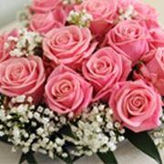 Risposta : fiori x matrimonio d'inverno
