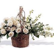 Sognare fiori