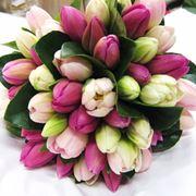 mazzi di fiori immagini