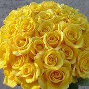 un mazzo di rose gialle-1
