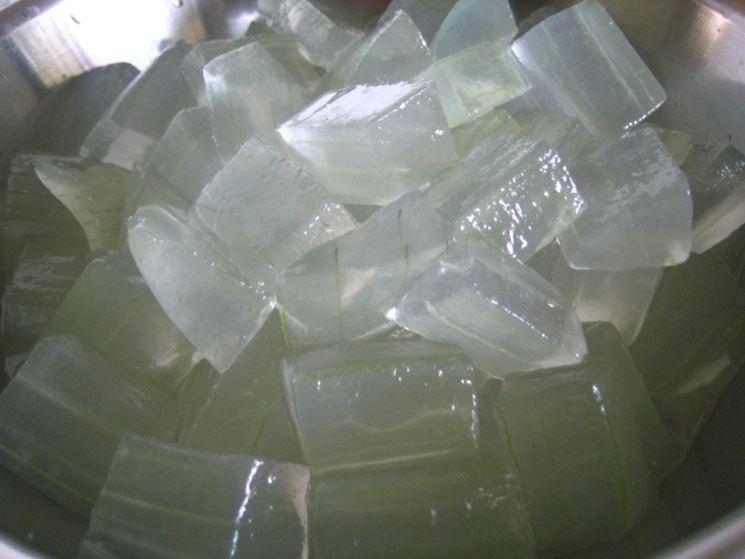 aloe vera gel-4