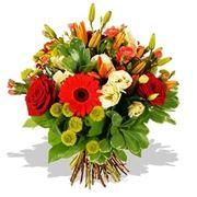 fiori per auguri-1