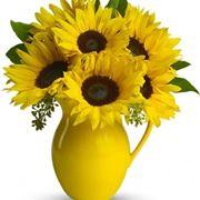 invio fiori Ferrara